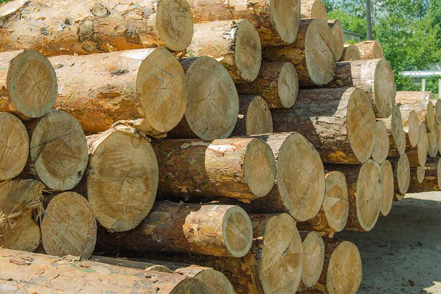 BURNBLOCK przykład użycia - przemysł drzewny